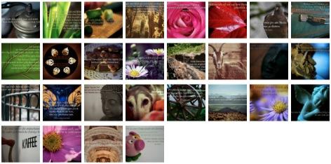 Bilder Galerie mit Weisheiten, Zitaten und Sprüchen Februar 2014