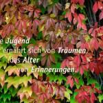 Herbst-Blätter gefärbt, von grün zu rot und dem Jüdischen Sprichwort: Die Jugend ernährt sich von Träumen, das Alter von Erinnerungen. Jüdisches Sprichwort