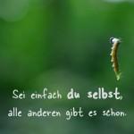 Raupe im Berliner Grunewald mit dem Spruch: Sei einfach du selbst, alle anderen gibt es schon.