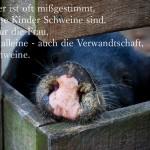 Schwein an der Domäne Dahlem in Berlin mit dem Erhardt Zitat: Der Eber ist oft mißgestimmt, weil seine Kinder Schweine sind. Nicht nur die Frau, die Sau alleine - auch die Verwandtschaft, alles Schweine. Heinz Erhardt