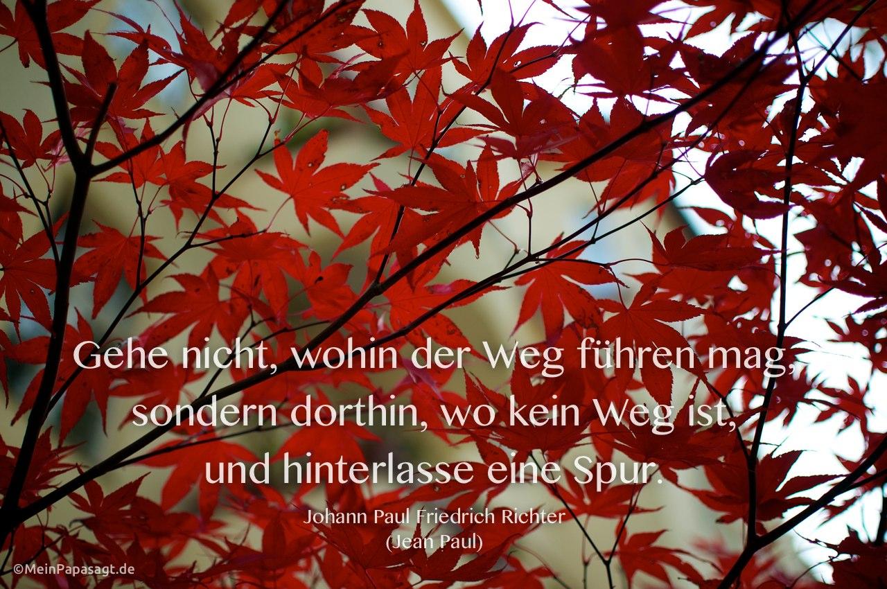 Herbstlicher Ahorn mit dem Jean Paul Zitat: Gehe nicht, wohin der Weg führen mag, sondern dorthin, wo kein Weg ist, und hinterlasse eine Spur. Johann Paul Friedrich Richter (Jean Paul)