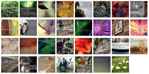 Übersichtsbild. Bilder Galerie mit Weisheiten, Zitaten und Sprüchen Juli 2014