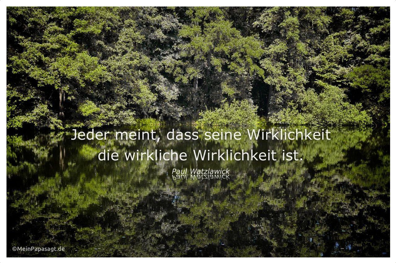 Waldsee im Havelland mit dem Watzlawick Zitat: Jeder meint, dass seine Wirklichkeit die wirkliche Wirklichkeit ist. Paul Watzlawick