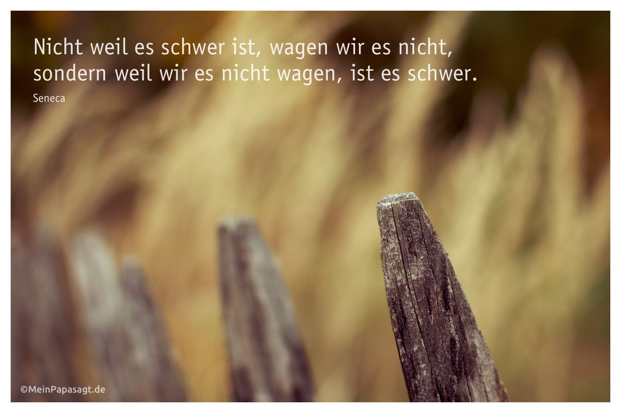 Alter Zaun vor einer Wildwiese mit dem Seneca Zitat: Nicht weil es schwer ist, wagen wir es nicht, sondern weil wir es nicht wagen, ist es schwer. Seneca
