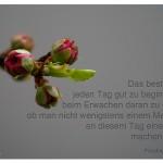 Mandelblüte mit Zitat: Das beste Mittel, jeden Tag gut zu beginnen, ist, beim Erwachen daran zu denken, ob man nicht wenigstens einem Menschen an diesem Tag eine Freude machen könnte. Friedrich Nietzsche