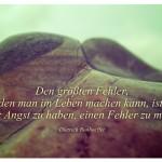 Farbverfremdeter Stein mit dem Zitat: Den größten Fehler, den man im Leben machen kann, ist, immer Angst zu haben, einen Fehler zu machen. Dietrich Bonhoeffer
