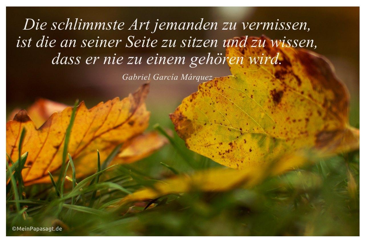 Herbstlaub mit dem Zitat: Die schlimmste Art jemanden zu vermissen, ist die an seiner Seite zu sitzen und zu wissen, dass er nie zu einem gehören wird. Gabriel García Márquez