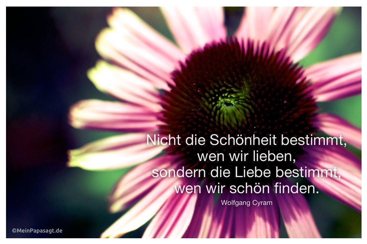 Blume mit dem Zitat: Nicht die Schönheit bestimmt, wen wir lieben, sondern die Liebe bestimmt, wen wir schön finden. Wolfgang Cyram
