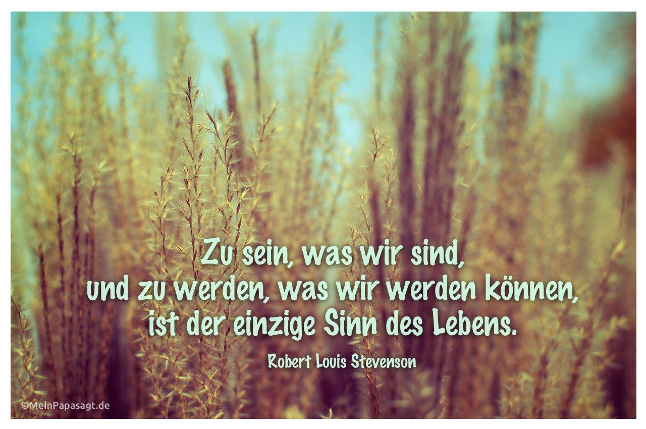 Pflanze mit dem Zitat: Zu sein, was wir sind, und zu werden, was wir werden können, ist der einzige Sinn des Lebens. Robert Louis Stevenson