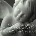 Engel können fliegen...