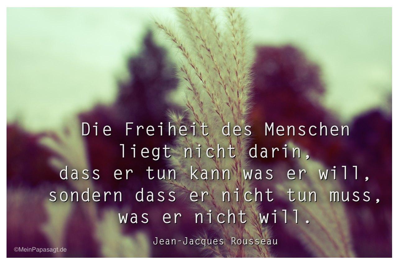 Gräser mit dem Zitat: Die Freiheit des Menschen liegt nicht darin, dass er tun kann was er will, sondern dass er nicht tun muss, was er nicht will. Jean-Jacques Rousseau
