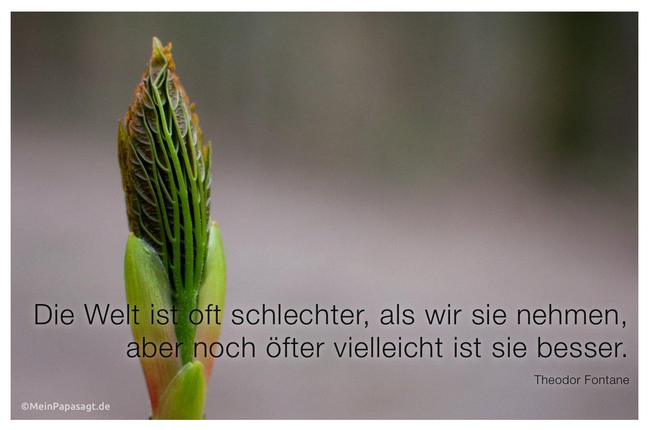 Knospe mit dem Zitat: Die Welt ist oft schlechter, als wir sie nehmen, aber noch öfter vielleicht ist sie besser. Theodor Fontane
