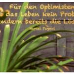 Palmenblätter mit dem Zitat: Für den Optimisten ist das Leben kein Problem, sondern bereits die Lösung. Marcel Pagnol