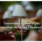 Pilze mit dem Zitat: Gemeinsame Erinnerungen sind manchmal die besten Friedensstifter. Marcel Proust