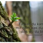 Neuer Trieb an einem Baum mit dem Zitat: Tu was du kannst, mit dem was du hast, dort wo du bist. Theodore Roosevelt