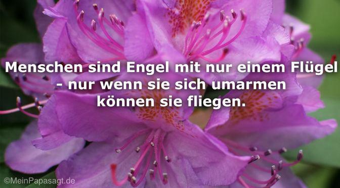 Menschen sind Engel…