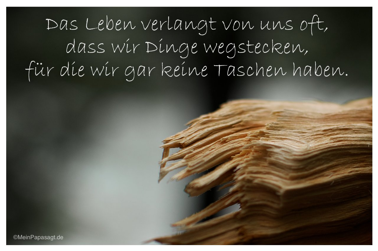 kurze sprüche Über das leben | bnbnews.co