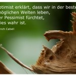 Abgebrochener Baumstamm mit dem Zitat: Der Optimist erklärt, dass wir in der besten aller möglichen Welten leben, und der Pessimist fürchtet, dass dies wahr ist. James Branch Cabell