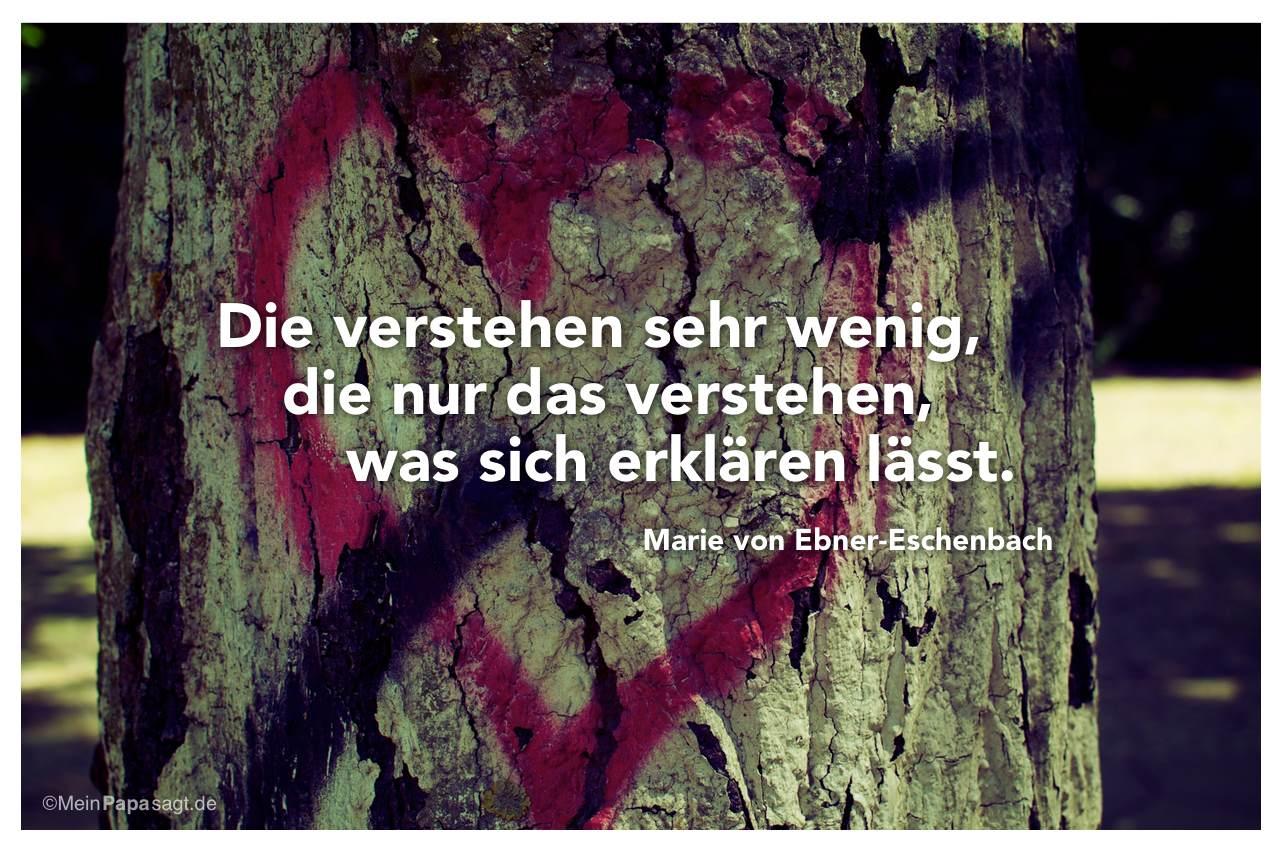 Graffiti-Herz an einem Baum mit dem Zitat: Die verstehen sehr wenig, die nur das verstehen, was sich erklären lässt. Marie von Ebner-Eschenbach