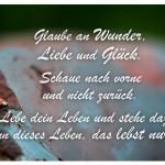 Marienkäfer auf einem Stein mit dem Zitat: Glaube an Wunder, Liebe und Glück. Schaue nach vorne und nicht zurück. Lebe dein Leben und stehe dazu, denn dieses Leben, das lebst nur du!
