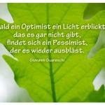Eichenblatt mit dem Zitat: Sobald ein Optimist ein Licht erblickt, das es gar nicht gibt, findet sich ein Pessimist, der es wieder ausbläst. Giovanni Guareschi