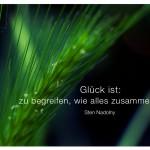 Gräser mit dem Zitat: Glück ist: zu begreifen, wie alles zusammenhängt. Sten Nadolny