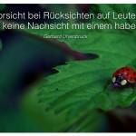 Marienkäfer mit dem Zitat: Vorsicht bei Rücksichten auf Leute, die keine Nachsicht mit einem haben. Gerhard Uhlenbruck