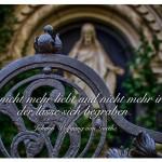 Grab mit dem Zitat: Wer nicht mehr liebt und nicht mehr irrt, der lasse sich begraben. Johann Wolfgang von Goethe