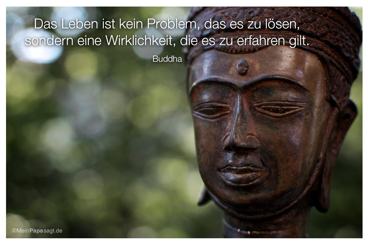 thanhhtyuihein zitate des buddha. Black Bedroom Furniture Sets. Home Design Ideas