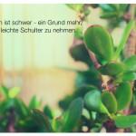 Geldbaum, auch Pfennigbaum mit dem Zitat: Das Leben ist schwer - ein Grund mehr, es auf die leichte Schulter zu nehmen. Emil Gött