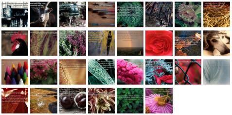 Übersichtsbild. Bilder Galerie mit Weisheiten, Zitaten und Sprüchen November 2014