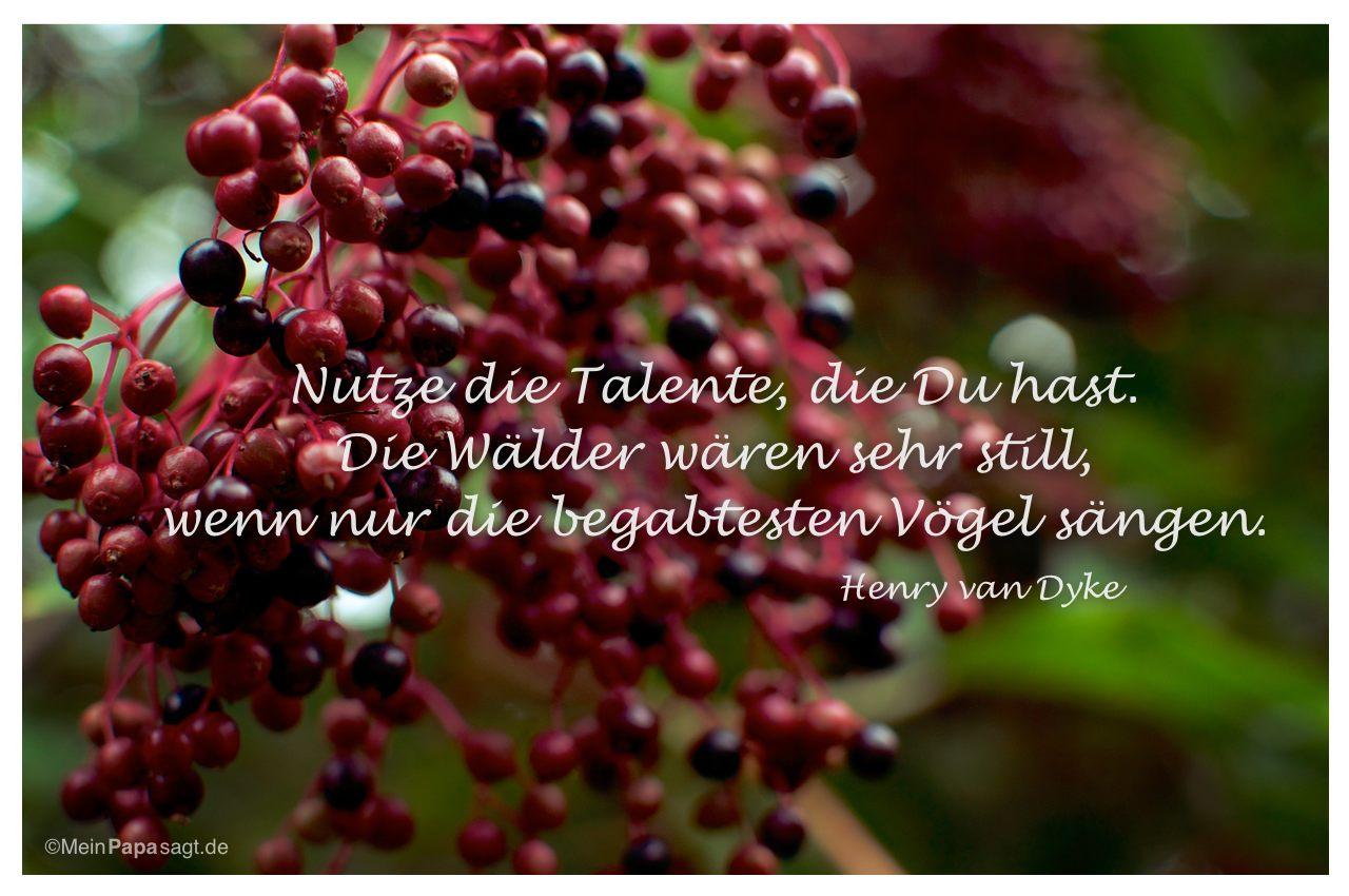 Beeren mit dem Zitat: Nutze die Talente, die Du hast. Die Wälder wären sehr still, wenn nur die begabtesten Vögel sängen. Henry van Dyke