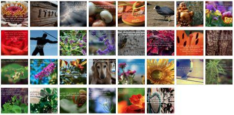 Übersichtsbild. Bilder Galerie mit Weisheiten, Zitaten und Sprüchen September 2014