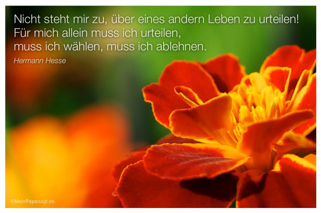 Hermann Hesse Zitate Zauber Familie Zitate Weisheiten