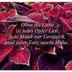 Pflanze mit dem Zitat: Ohne die Liebe ist jedes Opfer Last, jede Musik nur Geräusch, und jeder Tanz macht Mühe. Rumi