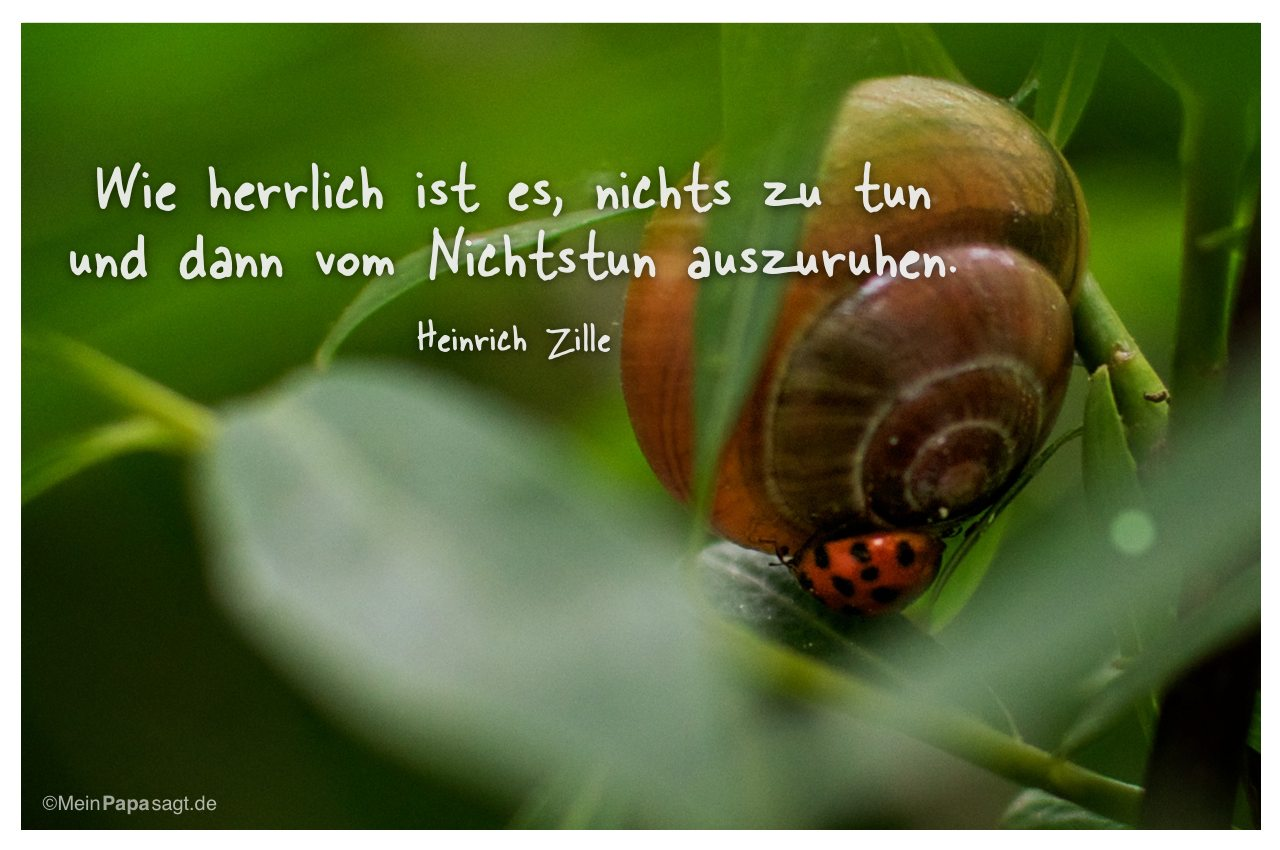 Schnecke Und Marienkäfer Mit Dem Zitat: Wie Herrlich Ist Es, Nichts Zu Tun  Und