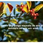 Hagebutte mit dem Zitat: Wir sehen die Dinge niemals so wie sie sind, sondern so wie wir sind. Anaïs Nin