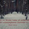 Mitten im Winter...