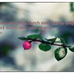 Winterstrauch mit dem Victor Huge Zitat: Der Geist wird reich durch das, was er empfängt, das Herz durch das, was es gibt. Victor Hugo