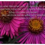 Blütenkelche mit dem Johann Wolfgang von Goethe Zitat: Hast du einen Menschen gern, so musst du ihn versteh'n. Musst nicht immer hier und da, seine Fehler seh'n. Schau mit Liebe und Verzeih', denn am Ende bist du selbst nicht fehlerfrei. Johann Wolfgang von Goethe