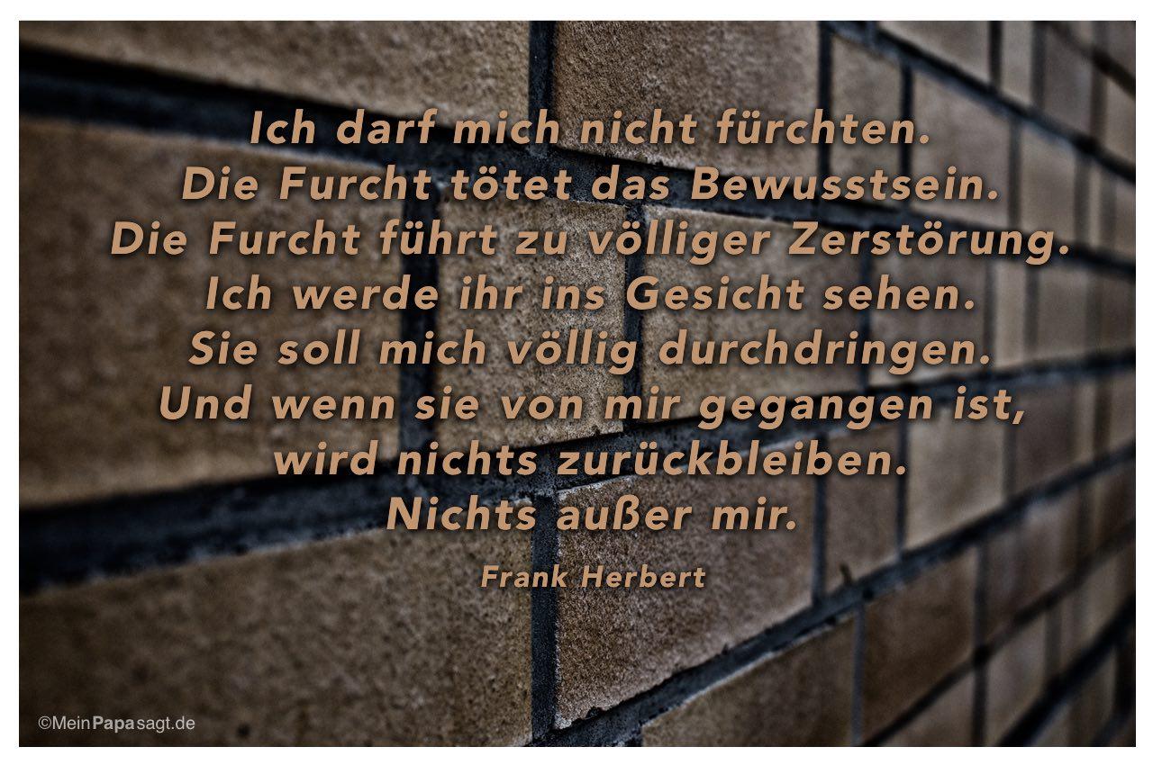 Steinmauer mit dem Frank Herbert Zitat: Ich darf mich nicht fürchten. Die Furcht tötet das Bewusstsein. Die Furcht führt zu völliger Zerstörung. Ich werde ihr ins Gesicht sehen. Sie soll mich völlig durchdringen. Und wenn sie von mir gegangen ist, wird nichts zurückbleiben. Nichts außer mir. Frank Herbert