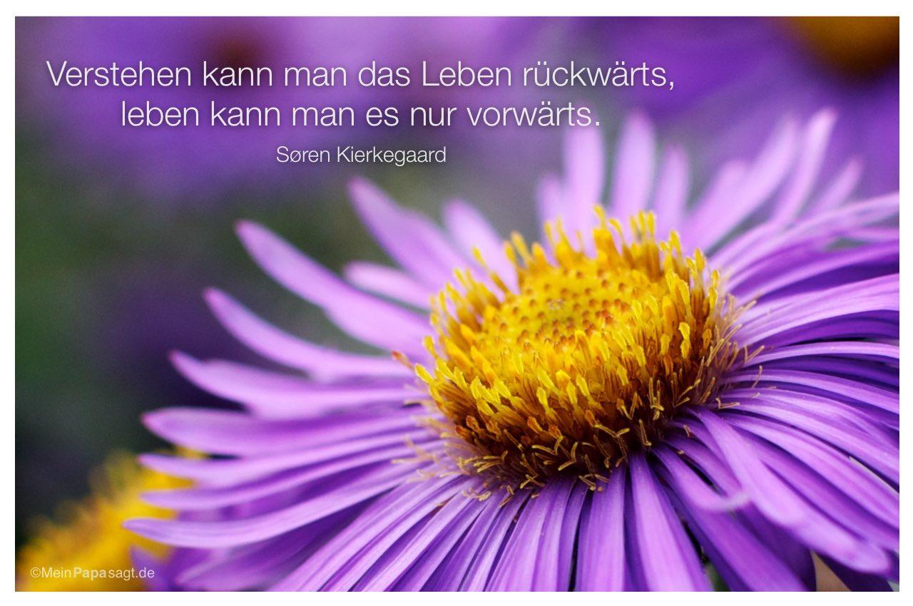 Astern mit dem Søren Kierkegaard Zitat: Verstehen kann man das Leben rückwärts, leben kann man es nur vorwärts. Søren Kierkegaard