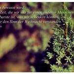 Tanne mit dem Roswitha Bloch Zitat: Wenn uns bewusst wird, dass die Zeit, die wir uns für einen anderen Menschen nehmen, das Kostbarste ist, was wir schenken können, haben wir den Sinn der Weihnacht verstanden. Roswitha Bloch