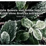 Frost auf Pflanzen mit dem Victor Hugo Zitat: Der letzte Beweis von Größe liegt darin, Kritik ohne Groll zu ertragen. Victor Hugo