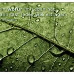 Regentropfen auf einem Blatt mit dem Friedrich Nietzsche Zitat: Wer ein wofür im Leben hat, der kann fast jedes wie ertragen. Friedrich Nietzsche