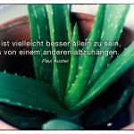 Echte Aloe mit dem Paul Auster Zitat: Es ist vielleicht besser allein zu sein, als von einem anderen abzuhängen. Paul Auster