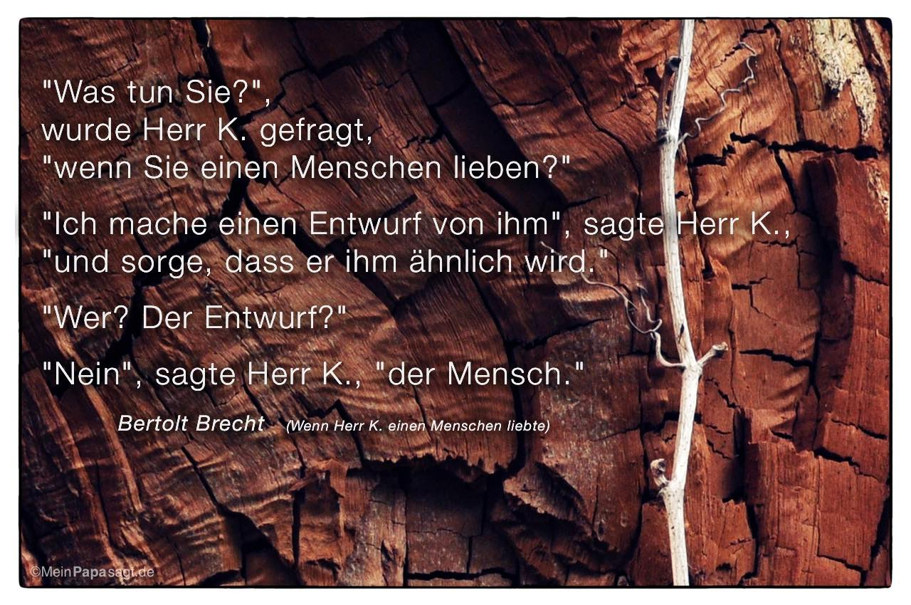 """Offener Baumstumpf mit dem Bertolt Brecht Zitat: """"Was tun Sie?"""", wurde Herr K. gefragt, """"wenn Sie einen Menschen lieben?"""" """"Ich mache einen Entwurf von ihm"""", sagte Herr K., """"und sorge, dass er ihm ähnlich wird."""" """"Wer? Der Entwurf?"""" """"Nein"""", sagte Herr K., """"der Mensch."""" Bertolt Brecht"""