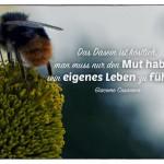 Hummel auf Blume mit dem Giacomo Casanova Zitat: Das Dasein ist köstlich, man muss nur den Mut haben, sein eigenes Leben zu führen. Giacomo Casanova