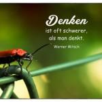 Feuerkäfer mit dem Werner Mitsch Zitat: Denken ist oft schwerer, als man denkt. Werner Mitsch