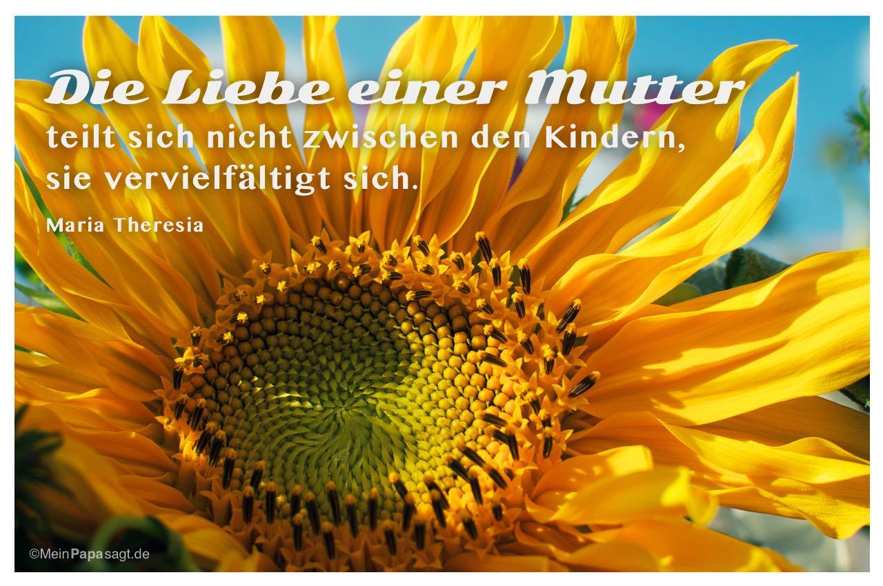 Sonnenblume mit dem Maria Theresia Zitat: Die Liebe einer Mutter teilt sich nicht zwischen den Kindern, sie vervielfältigt sich. Maria Theresia
